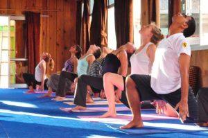200 Hour Yoga Teacher Training in Rishikesh India