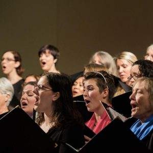 Tapestry Singers' Fall Concert: The First 30 Years