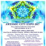 AWESMIC CITY EXPO 2017 - 4TH ANNUAL PALMER EVENTS