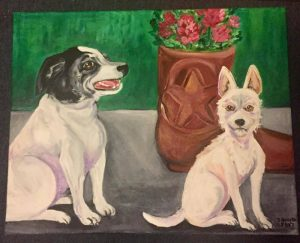 Austin's Best Friends: Paws & Claws Pet Portra...