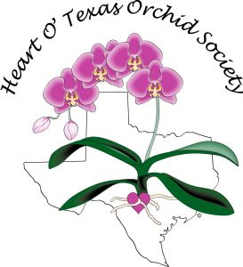 Heart O' Texas Orchid Society