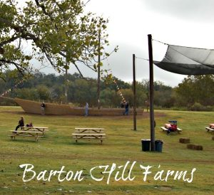 Barton Hill Farms