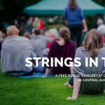 Strings In The Park