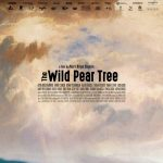 AFS Presents: THE WILD PEAR TREE