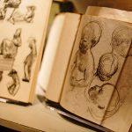 The UMLAUF Sculpture Garden & Museum and Hotel Ella Salon Series