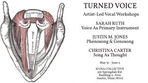 Turned Voice