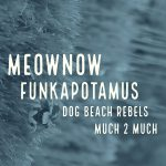 Much 2 Much, Dog Beach Rebels, Funkapotamus, and MeowNow