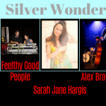Austin Women, Wine, and  Fashionistas: Silver Wonderland Glitz and Glam Concert