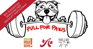 Austin Simply Fit and Yard Bar partner to support Austin Pets Alive!
