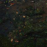 Mihee Nahm: Soaked