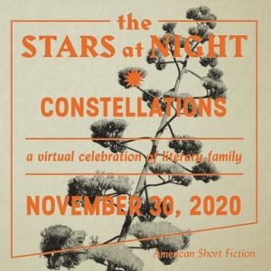 THE STARS AT NIGHT: CONSTELLATIONS