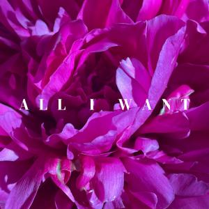 """Danilo's """"All I Want"""" Album Release Show with Davi..."""