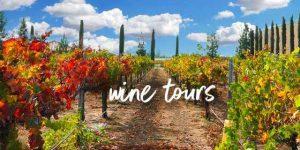 Saturday Winery Tour in Fredericksburg! 9/18