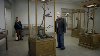 AFS Presents: A PIGEON SAT ON A BRANCH REFLECTING ON EXISTENCE