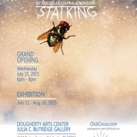 Bug Stalking - Photo Exhibit