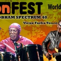 WobeonFest: An Austin World Music Festival