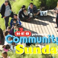 H-E-B Presents: Community Art Sundays