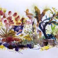 Flourish // an exhibition of contemporary botanical drawings