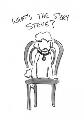 What's the Story Steve