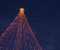 Zilker Tree Lighting